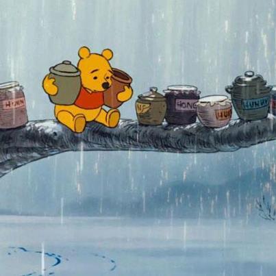 NP regn