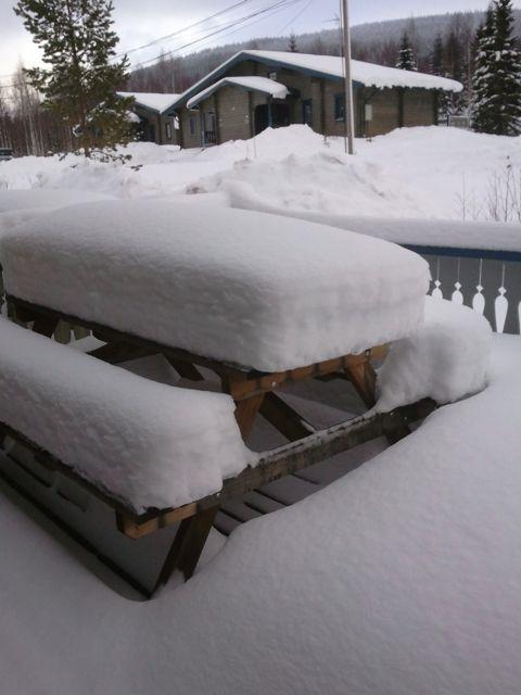 snöbord