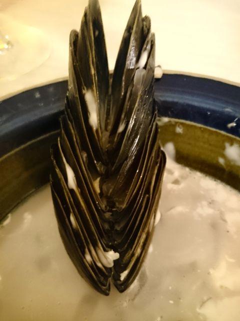 musselskal